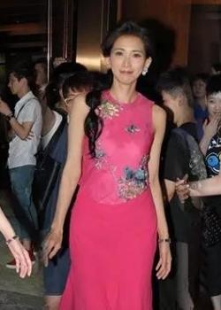 Supermodel Lin Chiling